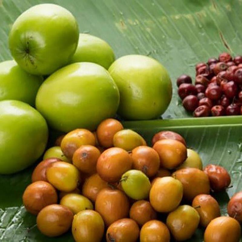 میوه های گرمسیری چابهار